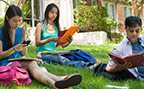 Students studying on lawn in late spring or summer
