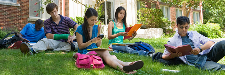 Young people studying on lawn in late spring or early summer